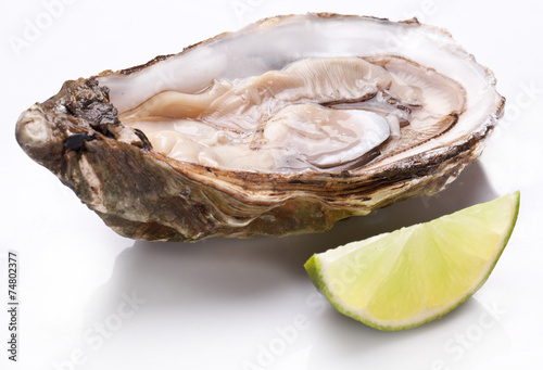 Photo  Raw oyster and lemon on a whte background.