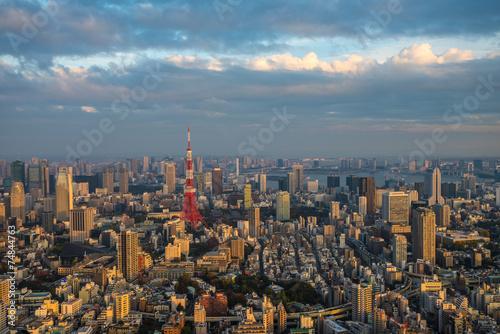 Poster Tokyo Tokyo aerial panoramic view