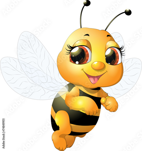 Photo  beautiful bee