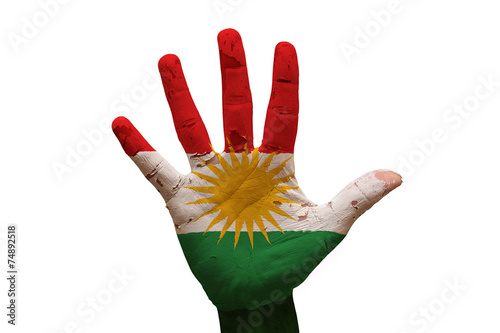 Fotografie, Obraz  palm flag kurdistan