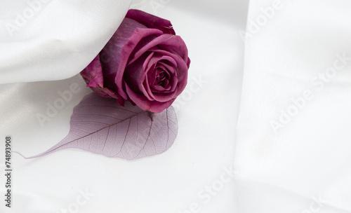 Rose Fleur Romantique Sur Fond De Satin Buy This Stock Photo And