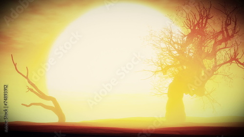 фотографія  Sunset Sunrise with Dried Trees in an Endless Desert with Smoot