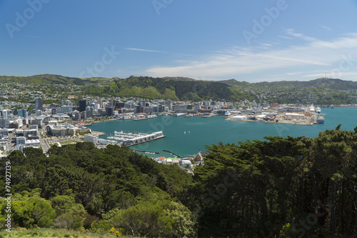 Foto op Aluminium Kust Wellington, New Zealand