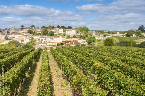 Tablou Canvas Vineyard at Saint-Emilion, France