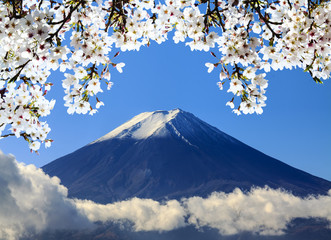 Fototapeta Japoński the sacred mountain of Fuji in the background of blue sky at Jap