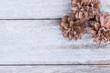 Pine cones on wood background