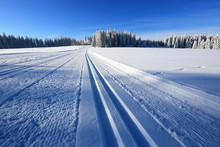 Winter Landscape And Trails Fo...