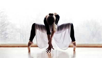 Naklejka Ballet Dancer