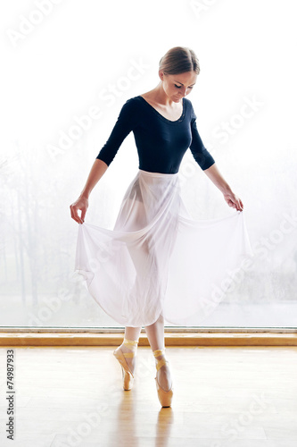 Ballet Dancer Plakát