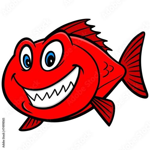 Valokuva  Red Snapper Fish