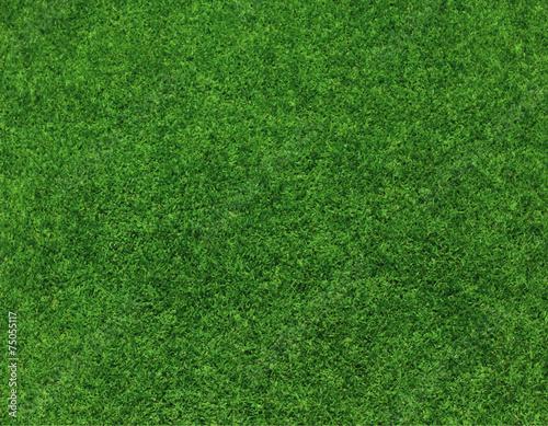 Deurstickers Groene green grass background vector