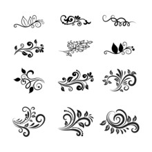 Vector Calligraphic Floral Des...