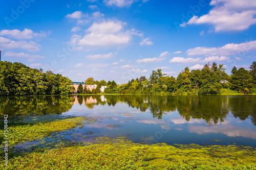 Fototapeta Pond in Spring Grove, Pennsylvania. obraz na płótnie