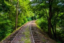 Railroad Tracks Through A Forest In York County, Pennsylvania.