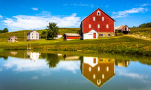 Reflection Of House And Barn In A Small Pond, In Rural York Coun
