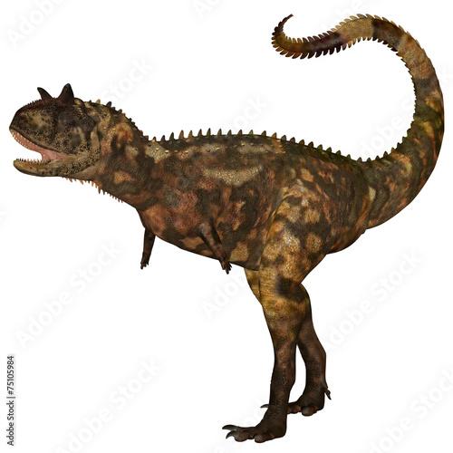Photo  Carnotaurus Dinosaur