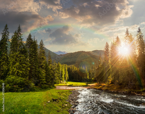Printed kitchen splashbacks River Mountain river in pine forest at sunset