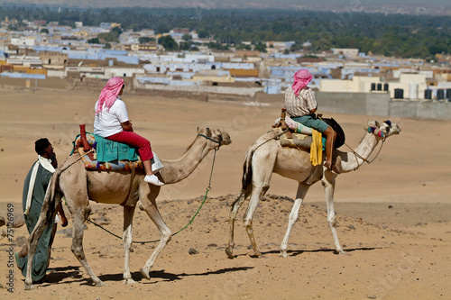 Fotografija  Egypte - Tourists led by camel drivers.Aswan