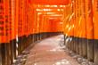 canvas print picture - inari schrein japan