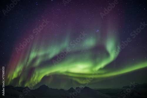 Photo  Aurora Borealis on the Arctic sky
