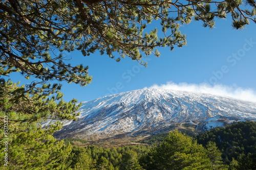 Fotografie, Obraz Etna Volcano Framed By Branches, Sicily