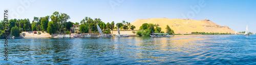 Tuinposter Egypte The lush garden