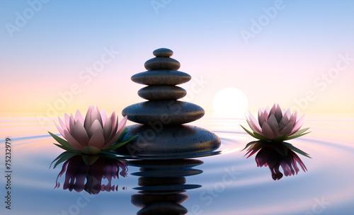 Garden Poster Lotus flower Zwei rosafarbene Lotusblüten mit Steinen im See