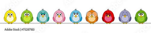 Fotografie, Obraz  funny birds #2