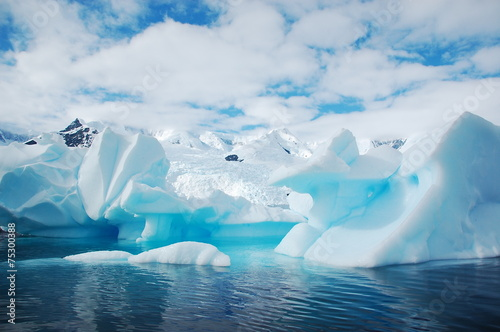 Canvas Prints Antarctic 氷山