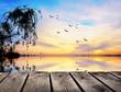 reflejos matinales en el lago
