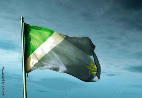 Vászonkép Mato Grosso do Sul (Brazil) flag waving on the wind