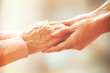 canvas print picture - Helping hands, care for the elderly concept