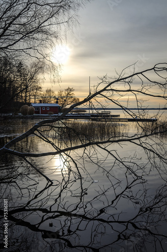 Staande foto Scandinavië Beautiful winter sunrise in vertical view