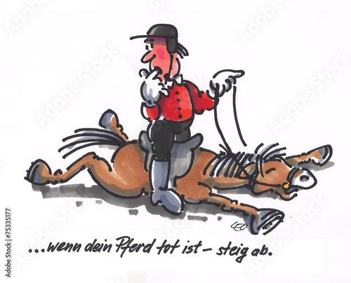 Wenn Dein Pferd Tot Ist Steig Ab