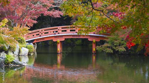 czerwony-drewno-most-na-ogrodzie-w-japonia