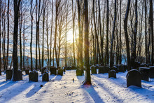 Bavarian Jewish Forest Graveyard
