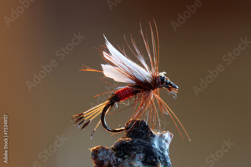 Tablou Canvas Red fly fishing lure