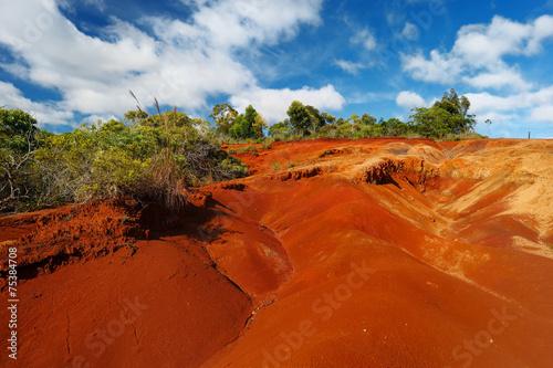 Keuken foto achterwand Rood traf. Famous red dirt of Waimea Canyon in Kauai