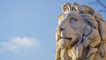 A Ston Statue Of A Lion's Head