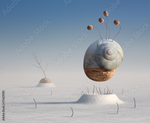 Surreal winter artistic image of a snail and walnut