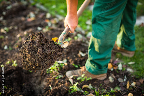 Photo sur Toile Cappuccino Gardening - man digging the garden soil with a spud