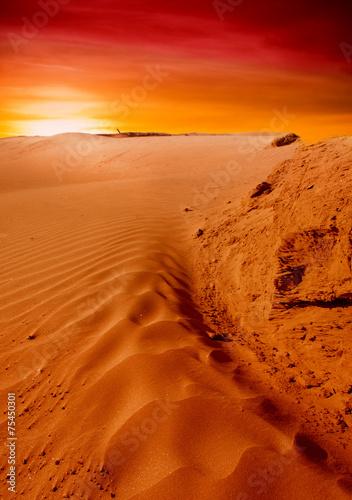 Foto op Canvas Baksteen Sunset over the Sahara Desert