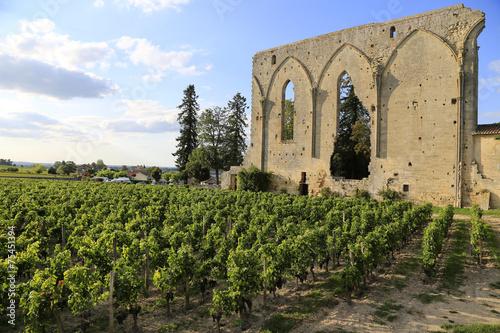 Photographie Weinbau Frankreich: Mauerreste Grandes Murailles im berühmten Weinort Saint-Emil