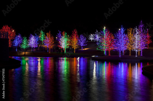 Trees tightly wrapped in LED lights for the Christmas holidays r Canvas-taulu