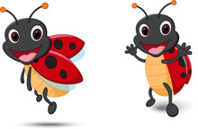 Happy Lady Bug Cartoon