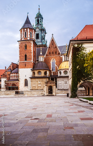 Wawel in Krakow, Poland #75477754