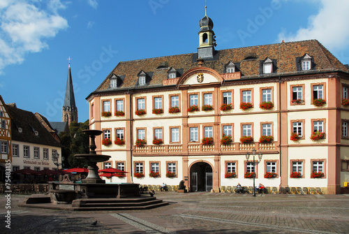Staande foto Oost Europa Rathaus in Neustadt/Weinstraße