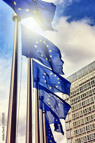 Obraz European Union flags - fototapety do salonu