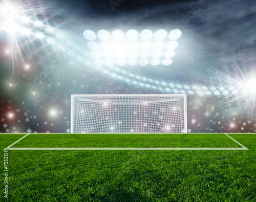 Fototapeta premium Piłka nożna na zielonej arenie stadionu