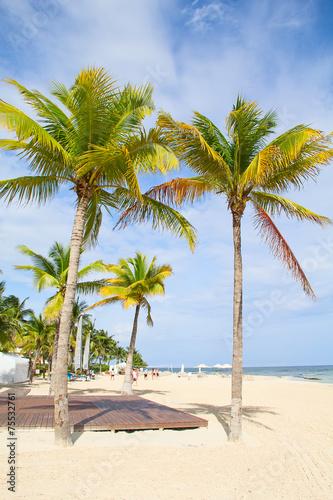 Foto auf Gartenposter Strand Cancun beach